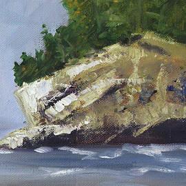 Northwest Island by Nancy Merkle