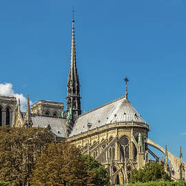 Notre Dame Cathedral by Elizabeth Coughlan