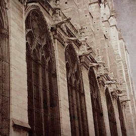 Notre Dame Cathedral Paris 2 - Goothic Gargoyles by Mary Lynn Giacomini