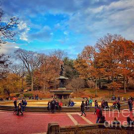 November in the Park by Miriam Danar