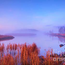 November misty morning 2 by Veikko Suikkanen