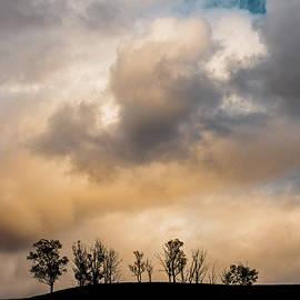 November Skies by Joseph Smith