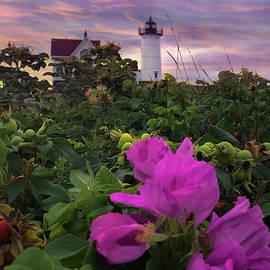 Nubble Lighthouse Pink Sunrise by Joann Vitali