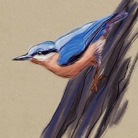 Nuthatch Climbing by Michael Kallstrom