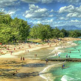 Oahu Hawaii Kailua Beach Park Wonder 888 Landscape Seascape Art by Reid Callaway