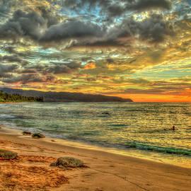 Oahu HI A Resting Place 8 Turtle Beach Sunset North Shore Wildlife Landscape Seascape Art by Reid Callaway