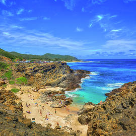 Oahu HI From Here To Eternity Beach Halona Cove South Shore Seascape Art by Reid Callaway