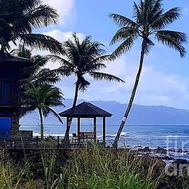 Oahu North Shore II by Neal Alicakos