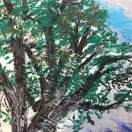Oak After Rain by Danielle Rosaria