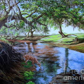 Oasis Beneath the Oaks-Florida White-Tailed Deer by Daniel Butler