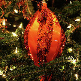 Oblong Christmas Ornament by Cynthia Guinn