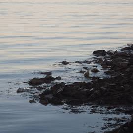 Ocean Like Silk by Shay Wainwright