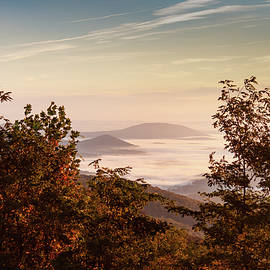 October Morning by David Beard