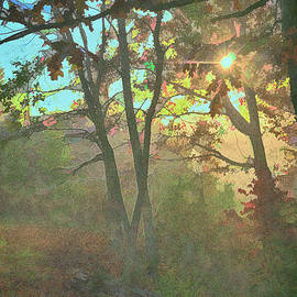 October Sunrise at the Cabin by Janice Pariza