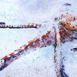 Octopus in Watercolor by Susan Maxwell Schmidt