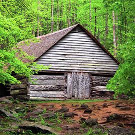 Ogle Family Barn, Great Smoky Mountains National Park by Douglas Taylor