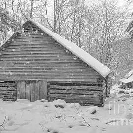 Ogles Cabin in Snow by Debbie Green