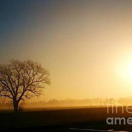 Oklahoma Sunset Fog