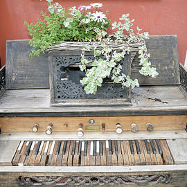 Old abandoned vintage piano, photo series 2. by Akos Horvath
