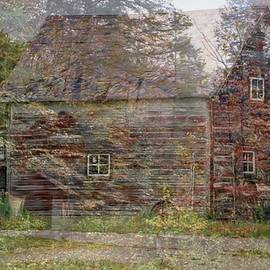 Old Barn and Forest by Susan Buscho