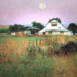 Old Barn and Pasture by Gary McJimsey