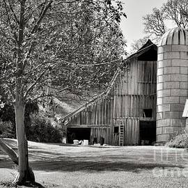 Old Barn And Silos - Black And White by Beautiful Oregon