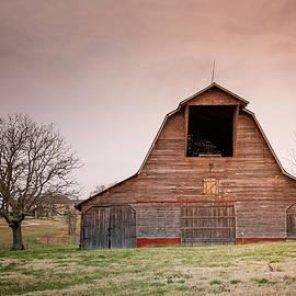Old Barn in the Ozarks by Tony  Colvin