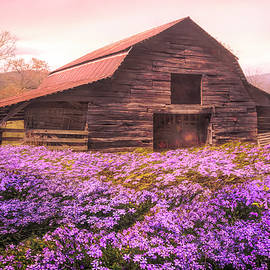 Old Barn in the Wildflowers on a Misty Spring Morning by Debra and Dave Vanderlaan