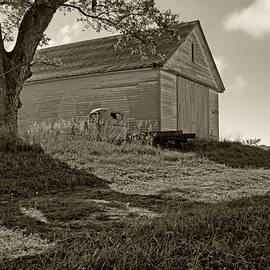 Old Barn - Tree by Nikolyn McDonald