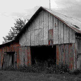 Old Barn1 Monochrome by Mingus Trading Company