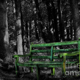 Old Bench in the Woods - Selective Colour by Yvonne Johnstone