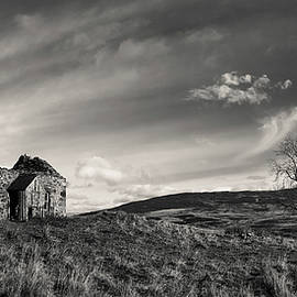 Old Bothy and Tree by Dave Bowman