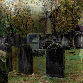 Old Cemetery by Denise Harty