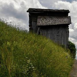 Old Dolomite Barn by Norma Brandsberg