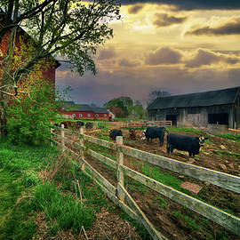Old Farm After the Storm by Joann Vitali