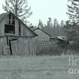 Old Farm Yard by Mary Mikawoz