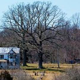 Old Home Place by Richard Thomas
