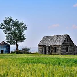 Old Idaho Farm House Summer Days by Michael Morse