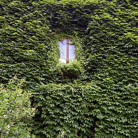 Old mediterranean window in an old house. Side of an old building, photo series 6. by Akos Horvath