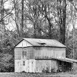 Old Metal Barn in Craven County North Carolina by Bob Decker