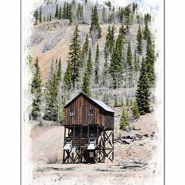 Old Mining Cabin In Southwestern Colorado by Toni Abdnour