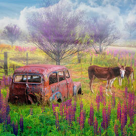 Old Pals on the Farm by Debra and Dave Vanderlaan