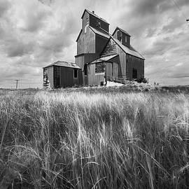 Old Rural Elevator in Black and White by Matt Hammerstein