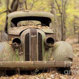 Old Rustic Pontiac  by Linda D Lester