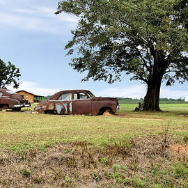 Old Rusty Chevy Cars And A Truck by John Trommer