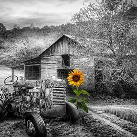 Old Rusty on the Farm in Black and White and Yellow Color Select by Debra and Dave Vanderlaan