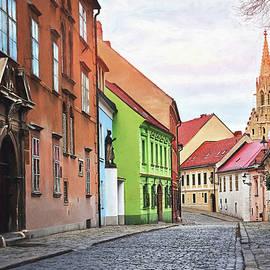 Old Town Bratislava  by Carol Japp