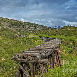 Old Trestle by Robert Bales