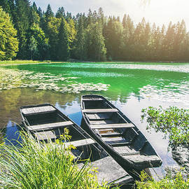 Old weathered wooden boats on riverbank of small altitude french Genin lake by Gregory DUBUS