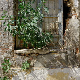 Old Window In La Chanca by Digby Merry